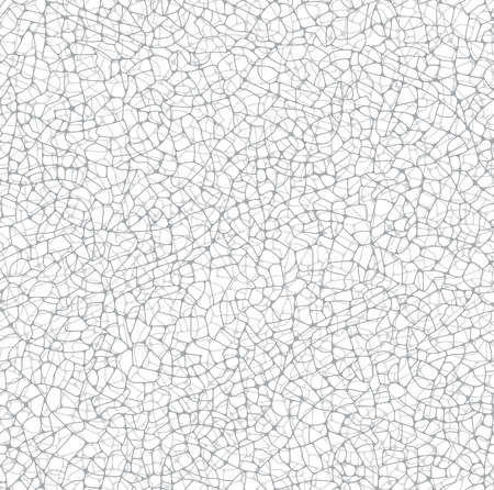 cracks: Vector texture of irregular cracks, white background. Seamless pattern irregular network of fractures.The gray colors.The network of cracks situated in two layers.