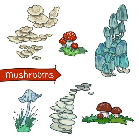 Mushrooms set isolated on white background  Stock Vector - 28980117