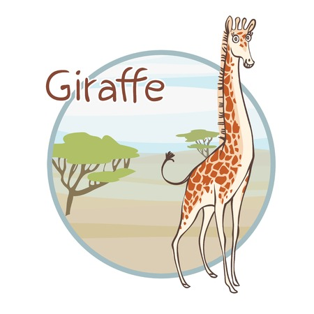 girafe: Funny cartoon giraffe  Character design