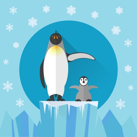 penguin colony: Adult penguin and baby penguin against the snow and ice