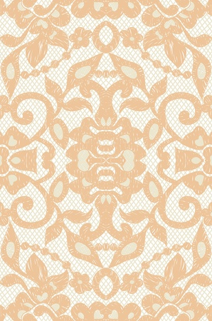 Beautiful floral beige lace illustration Vector