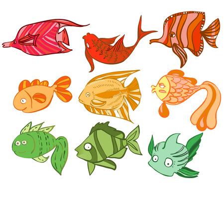 charismatic: Multicolored charismatic fish. Vector illustration