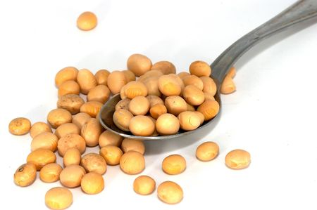 soya beans can be used by itself/whole, soya sprouts, processed as soya milk, tofu, soya sauce or miso. Soya is also used to make soy candles and they burn longer and healthier. It is healthy source for nutrition. And as a supplement milk for lactose into Stock Photo - 414788