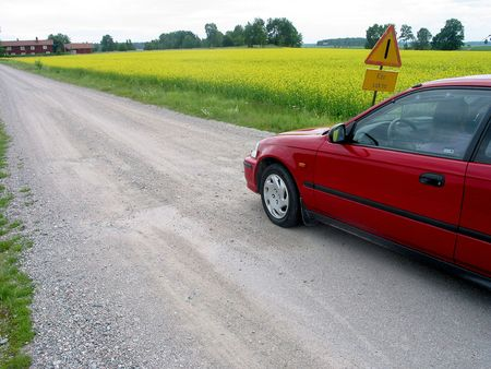 A car moving next to open fields of yellow and green, transition from grass to flowers. photo