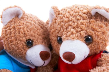 Toy bears dress up as a couple, with shirt and tie and frilly dress. Next to each other, in love, friendship, cuddling, closeup photo