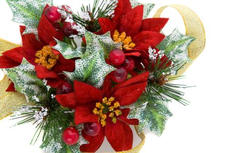 Poinsettia Christmas decoration, nice green and reds color combination, with gold ribbon. photo