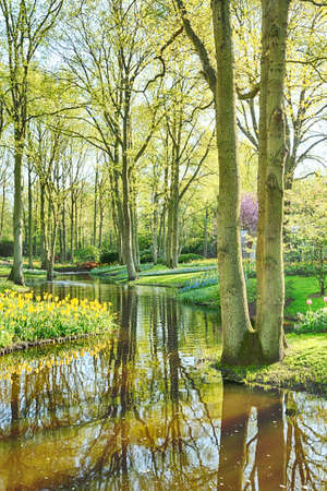 sinlight: Morning view of a romantic outdoor park with a water canal, trees and flowers.