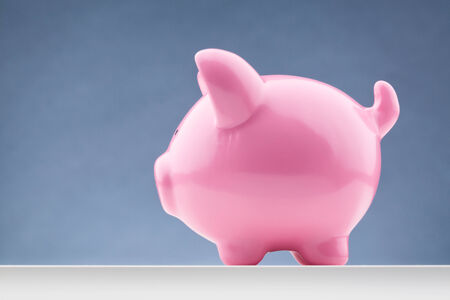 Side view of a pink piggy bank with copy space. photo