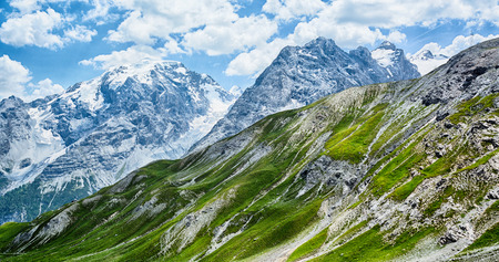 mountaintops: Scenic summer view of the snow covered mountaintops and grass covered hills at the Stelvio pass, Italy.