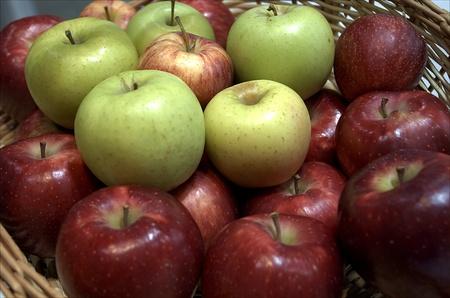 apple variety photo