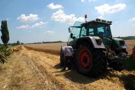 combine harvester in field wheat 7 photo