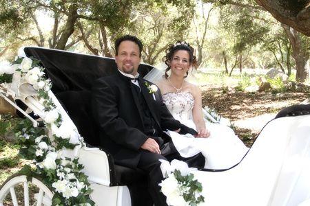 curare teneramente: novelli sposi in carrozza