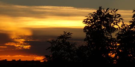Orange Sunset in Arizona Banco de Imagens
