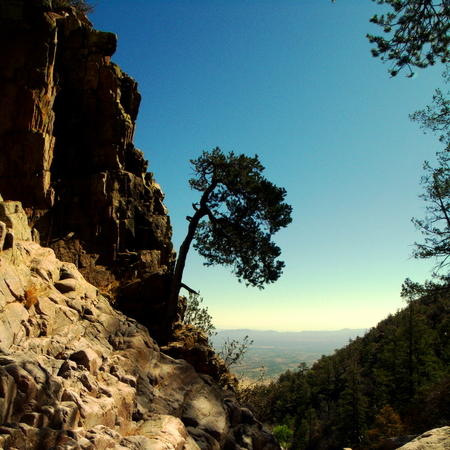 cranny: Rocky Cliff Gap  Carr Canyon part of the Coronado National Forest located in Sierra Vista,   Arizona