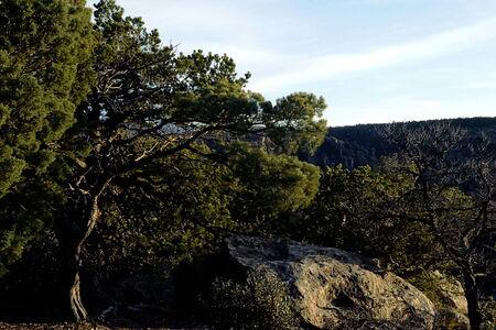 43 Chiricahua Una de las maravillas de Rocks cadena montañosa llamada la Tierra de las rocas de pie-por los Apaches Chiricahua Massai Point Foto de archivo
