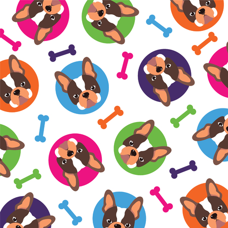 french bulldog: French bulldog pattern,vector full color