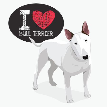 Vector color sketch of cheerful smiling Excellent Bull Terrier.