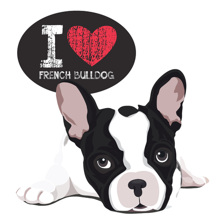 french bulldog: vector closeup portrait of the domestic dog French Bulldog breed Illustration