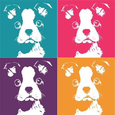 boston terrier: boston terrier pattern pop art illustration