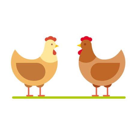 Hen vector illustration. Stylized poultry farm chicken flat icon.
