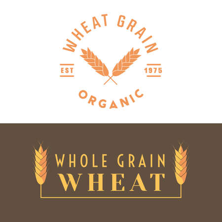 Wheat label for cereal grain and other products like flour, semolina, malt, bulgur groats. Organic food ingredient for bread, pasta, bakery. Vector illustration.