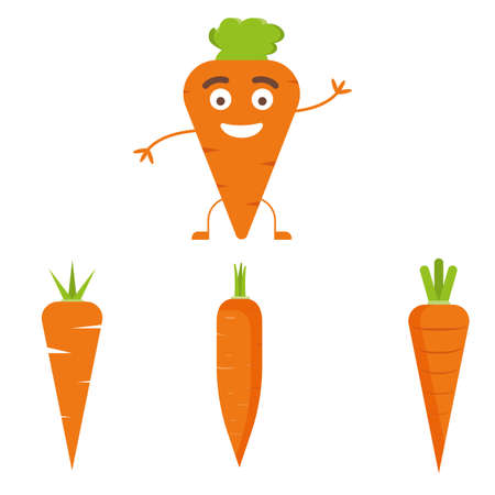 Vector carrot illustration. Healthy food, vegetable ingredients.