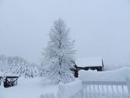 Winter landscape at the countryside Reklamní fotografie