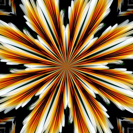 ? background floral patterns Imagens
