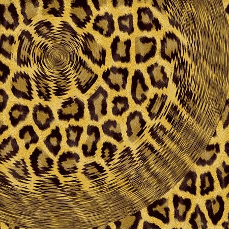 Tela de leopardo Motivos estilizados de foto en la computadora Foto de archivo - 72287705