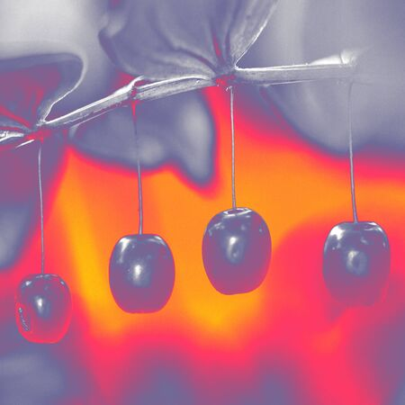Computer stylized picture with cherries for scrapbooking or --other