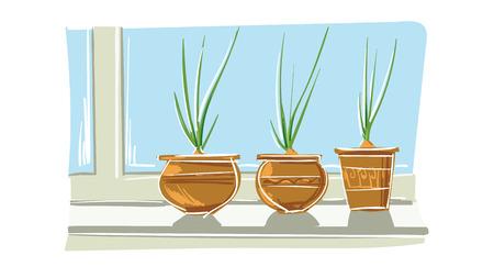 Green onion in pot