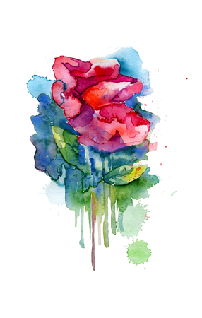 Red blooming  watercolor sketch. Isolated from background pictur