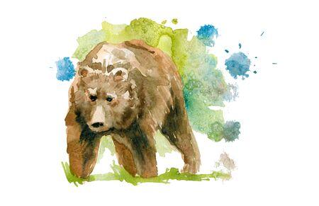 Cute brown wild bear. Watercolor sketch drawing. 版權商用圖片
