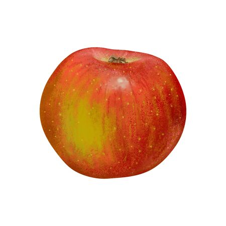 Red apple isolated on white background - draw
