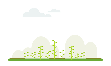 plant agriculture flat cartoon background with sky and cloud