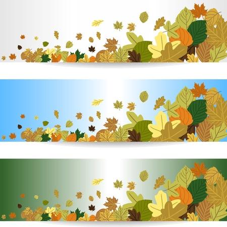 가을 바람에 나뭇잎