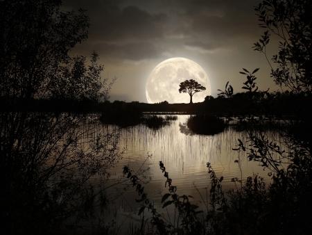 rise and shine: Big Moon over the wild lake Stock Photo