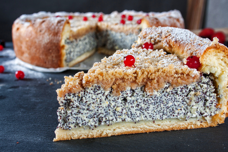 Cottage cheese poppy seed cream pie with cinnamon topping