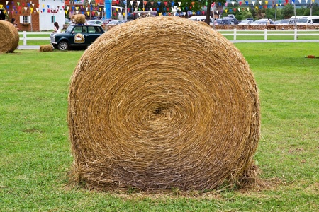 Big hay bale roll in a green field photo