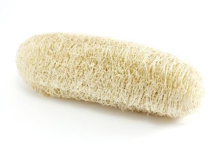 scrubber: luffa sponge natural fiber for body scrubbing on white background.