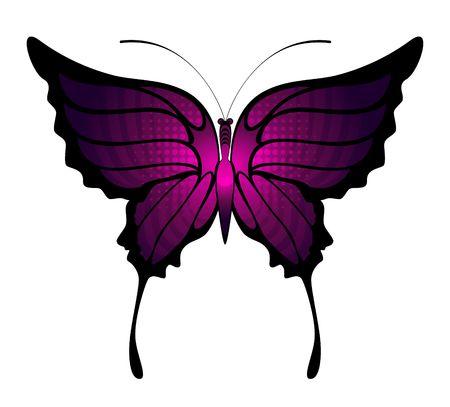 Tropische vlinder is geïsoleerd