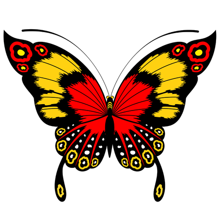 Tropical butterflies are isolated Stock Vector - 8190546