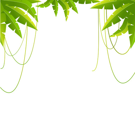 Beautiful background with tropical branchs Stock Vector - 8283425