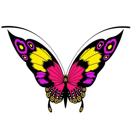 Tropische vlinder zijn geïsoleerd op een witte background.vector