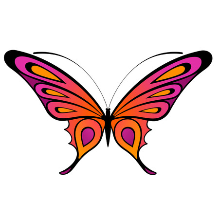 Tropical butterfly are isolated on a white background.vector Stock Vector - 8343596