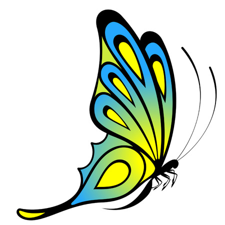 Tropical butterfly are isolated on a white background.vector