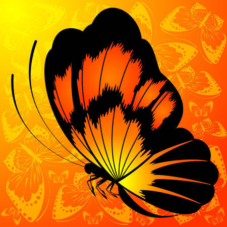 Beautiful background with tropical butterfly