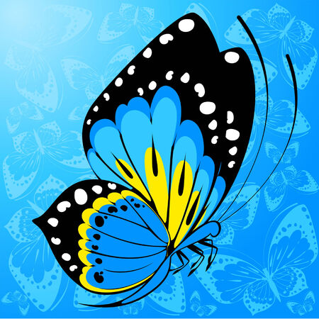Beautiful background with tropical butterfly Vector