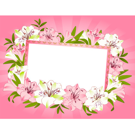 pink lily: Beautiful frame with Lily