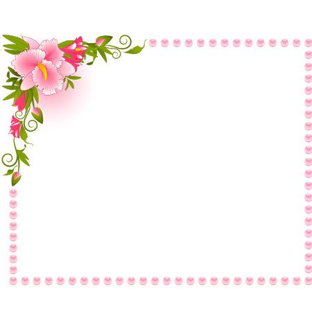 bordures fleurs: Belle orchid�e sur le fond.
